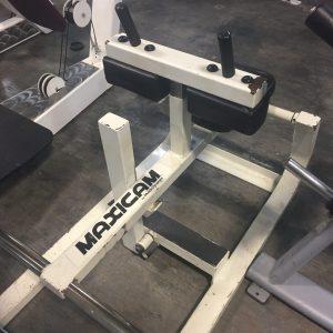 Maxicam Seated Calf
